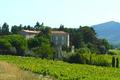 chateau de Rouanne