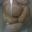 Macarons au noix