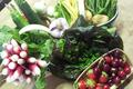 fruits et légumes de saison (mai)