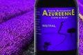 l'Azuréenne, La Mistral