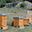 Le rucher du Martagon