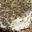 Chèvre aux Herbes de Provence