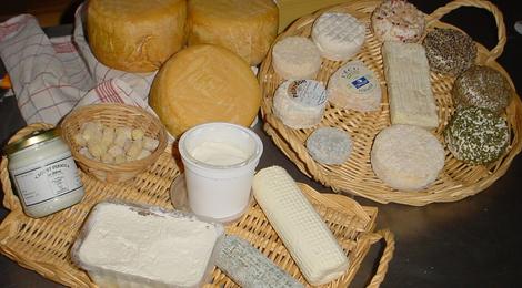 Fromages de chèvres fermier.