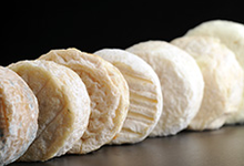 Des fromages de chèvres sous plusieurs formes: