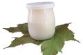 Yaourt vanille au lait entier (pièce)