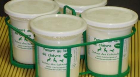 yaourts au lait de chèvre