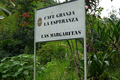 Café COLOMBIE - Las Margaritas - Pacamara - Méthode EXPRESSO