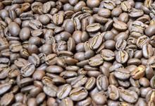 Café CAMEROUN - Plantation Frères du Noun