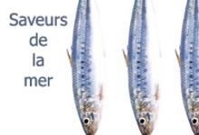 Thon & anchois de qualité