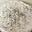 Petit Brie au poivre