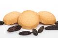 Dhardelot biscuitiers,  Fève de tonka