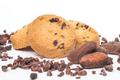 Dhardelot biscuitiers,  Fèves de cacao