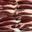 Magret de canard séché 100g
