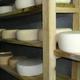 Ferme de la montagne verte - Bergère, fromage de brebis