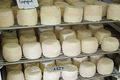 Ferme Lahilhanne, fromages de chèvre de race pyrénéenne