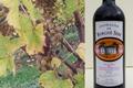 domaine de Burgué-Séré, Vin de Pays Rouge