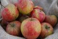 les fruits de Clazay, pomme jonagold