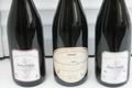 domaine de la Rôtisserie, Pinot noir