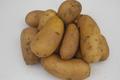ferme de Rigny,  Pommes-de-terre Charlotte