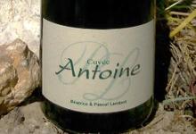 Chinon Lambert, cuvée Antoine