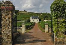 Domaine De Couly Dutheil