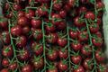 Tomates cerises grappes, Les Saveurs de Chailly
