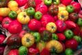Tomates anciennes noires, Les Saveurs de Chailly