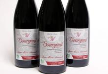 Bourgueil rouge Bio Jean-Marie Amirault