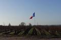 Clos Du Vigneau, domaines Jamet