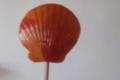 confiserie Hallard, Sucette – Coquillage