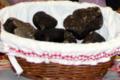 Serge et Colette Garot, truffes