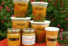 les ruchers de la Maulne, Le miel de tournesol