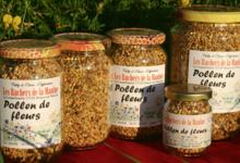 les ruchers de la Maulne, Le Pollen de fleurs