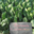 les jardins de contrat, ferme du Roucheux