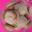 Tradi-macaron noisette