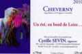 Cyrille Sevin, Un Eté en Bord de Loire