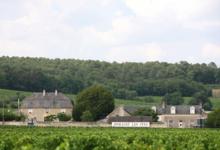 Domaine Les Pins, Pitault Landry
