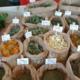 feuilles et plantes biologiques
