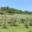 Le Jardin D'ollon En Drome Provencale