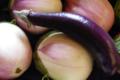 aubergines Rosa bianca et Pink tung