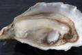 Les Parcs Saint Kerber, huître creuse de Cancale