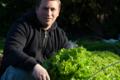 Le jardin du primeur, Nos salades (ramassées à la main)