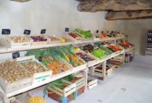 Les jardins du châtaignier, ferme bio de Radeux