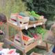 Legumes, Les Primeurs des 5 Sens