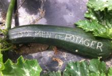 Dolmen & Potager, ferme de COAT MEZ