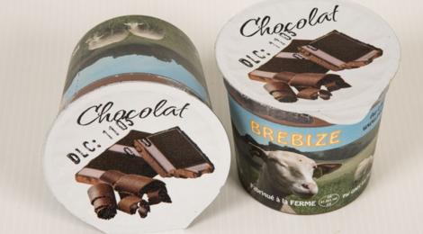 crèmes dessert chocolat au lait de brebis