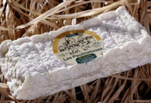 Les Paulinetoises,  Briquette de brebis au lait cru