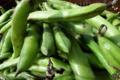 La Ferme de Mangorvenec, fèves
