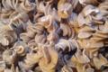 la fabrik des 1001 pâtes, Fusillis séchés au graines de pavot