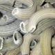 la fabrik des 1001 pâtes, Macaronis séchés à la laitue de mer